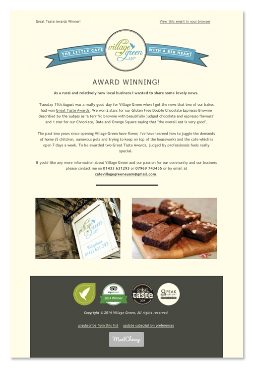zinc designs - village green newsletter